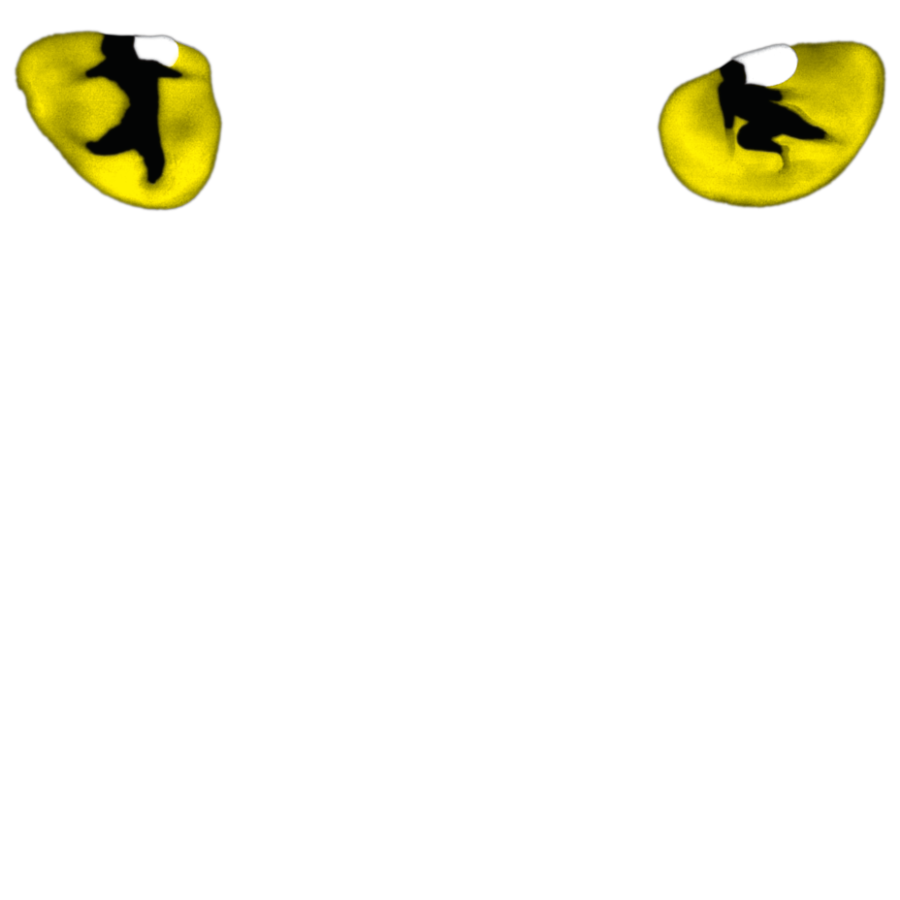 Cats header image