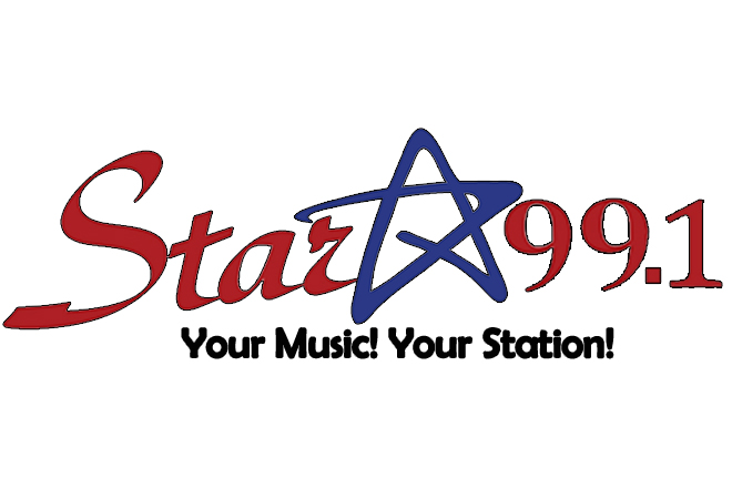 Flat Star Logo